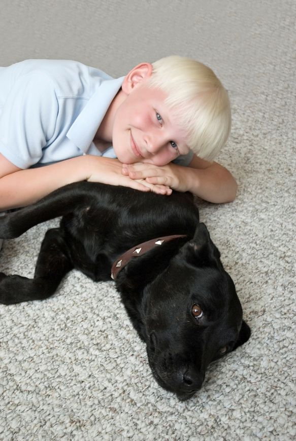 dog and child on carpet