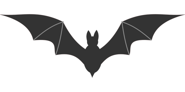 Bat illustration with it's wings spread out
