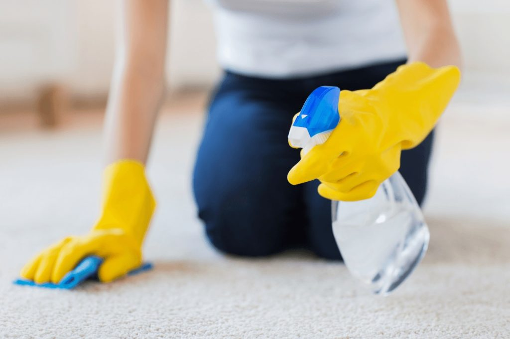 a lady deodorizing her carpet by hand